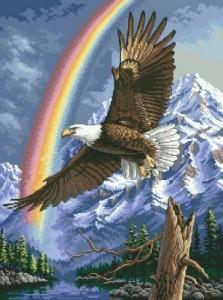 Схема Белоголовый орлан / Bald Eagle