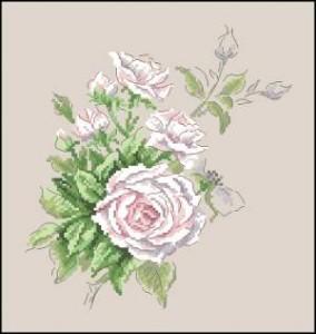 Схема Роза белая