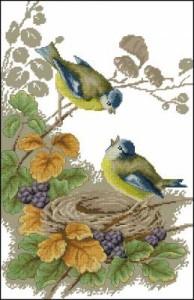 Схема Нежные птички