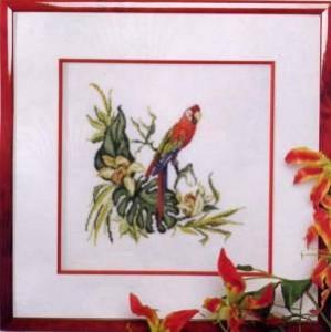 Схема Попугай Ара / Picture Ara Parrot
