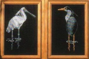 Схема Водоплавающие птицы / Water Birds
