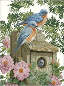 Схема Сад синей птицы / Garden blue birds