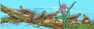 Схема Черепахи