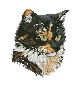 Схема Пестрый кот (трехцветная кошка)