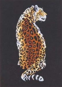 Схема Леопард (спиной)