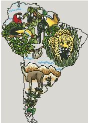 Схема континенты америка