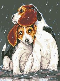 Схема Братская защита (щенки)