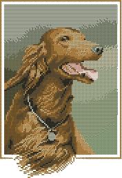 Схема Собаки / Red Setter