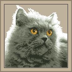 Схема Серый кот / Gata Persa