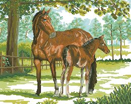 Схема Лошадь с жеребенком у пастбища