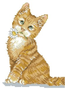Схема Рыжий котёнок