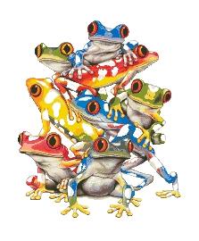 Схема Цветные лягушки
