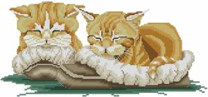 Схема Домашние коты