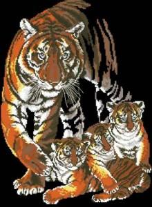 Схема Семья (тигры)