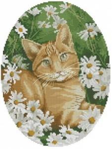 Схема Кошка в ромашках