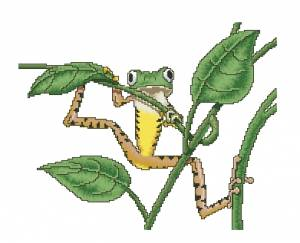 Схема Древесная лягушка