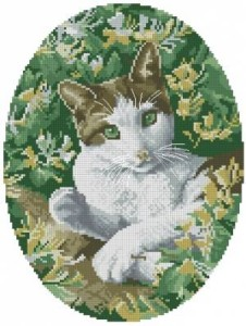 Схема Кошка зеленоглазая