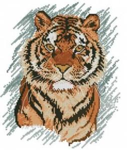 Схема Тигр удивление