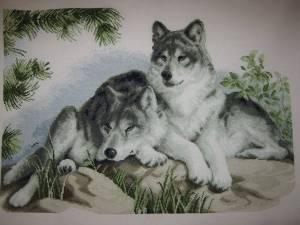 Схема Волки