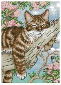 Схема Сон котенка