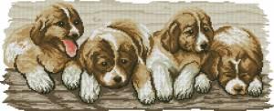 Схема 4 щенка
