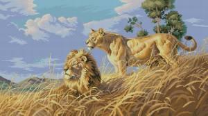 Схема Африканские львы
