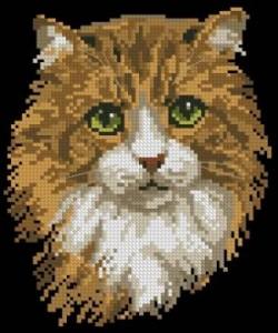 Схема Рыжий кот