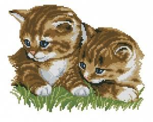 Схема Котята