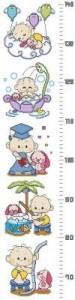 Схема Малыш. Ростомер