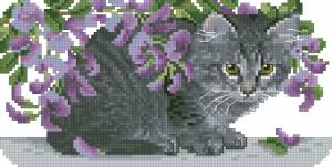 Схема Котенок под фиолетовыми цветами