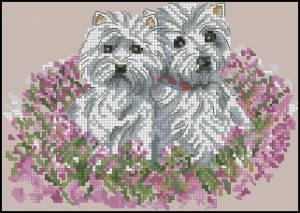 Схема Две собачки