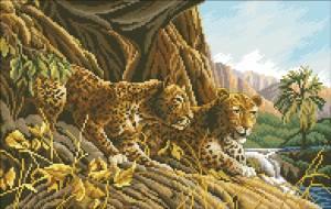Схема Леопарды