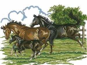 Схема Лошади с жеребенком
