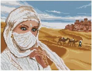 Схема Пустыня