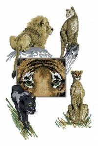 Схема Большие кошки (коллаж)
