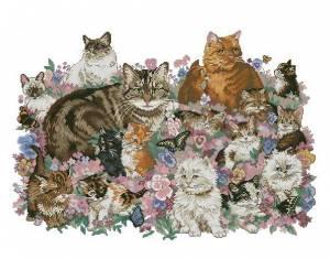 Схема Кошачье семейство