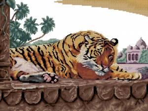 Схема Бенгальский тигр
