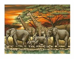Схема Закат в Африке