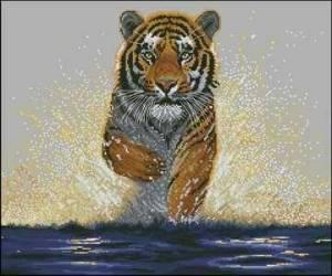 Схема Тигр бежит по воде