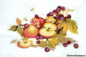 Схема Яблоки и виноград