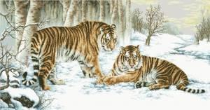 Схема Тигры