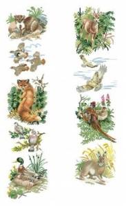 Схема Сэмплер. Дикие животные