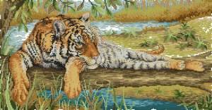Схема Тигр на отдыхе