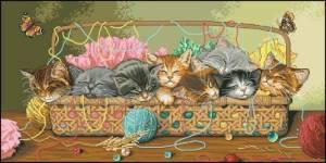 Схема Котята в корзине