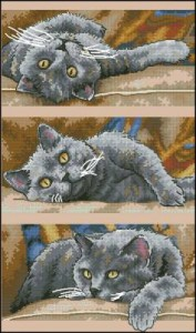 Схема Коты / DIMENSIONS 70-35301