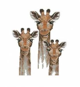 Схема Жирафы