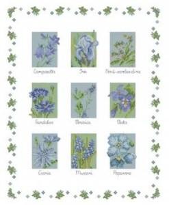 Схема Голубые цветы. Робин