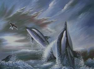 Схема Дельфины и чайка