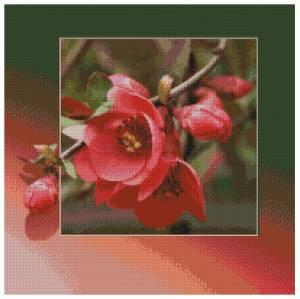 Схема Яблоневый цвет в рамке. Подушка