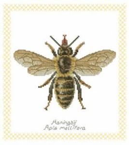 Схема Пчела